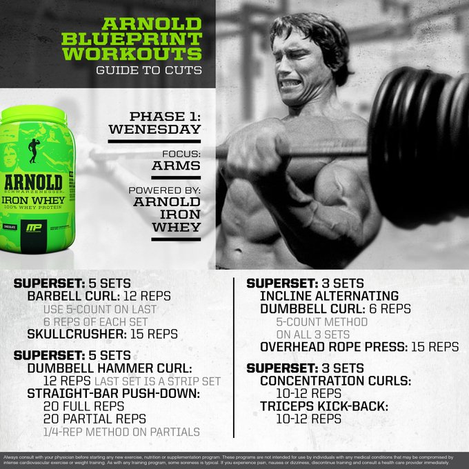 Arnold Schwarzenegger Blueprint To Cuts Phase One Overview